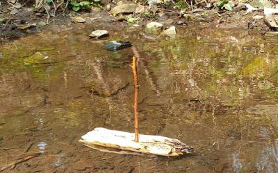 Wie Alexander Salamander zu seinem Namen, einem Boot und einem Keks kam