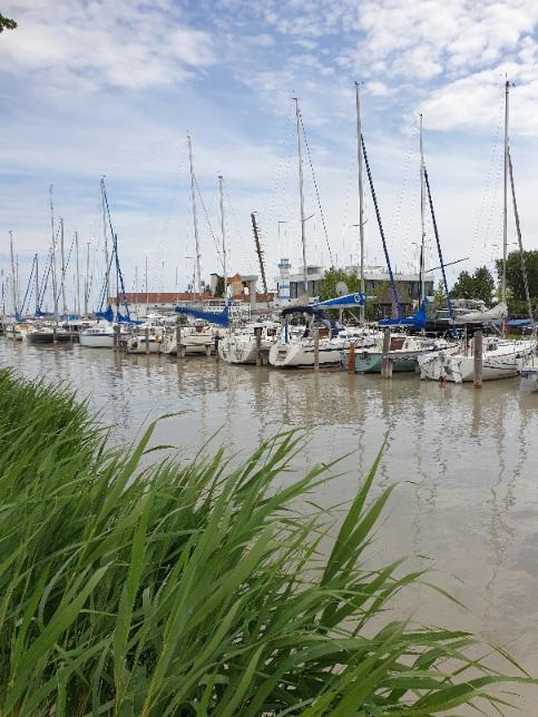 Bootshafen am Neusiedlersee